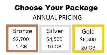 dataroomz pricing