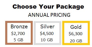dataroomz pricing